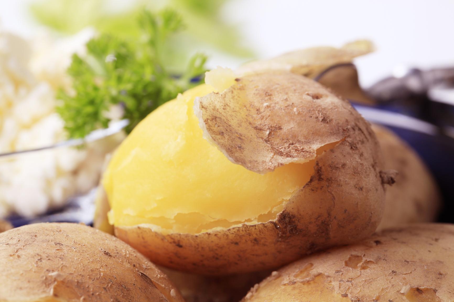 Можно ли собакам картошку вареную и сырую