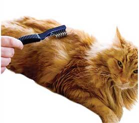Колтунорез для кошек и котов: как пользоваться