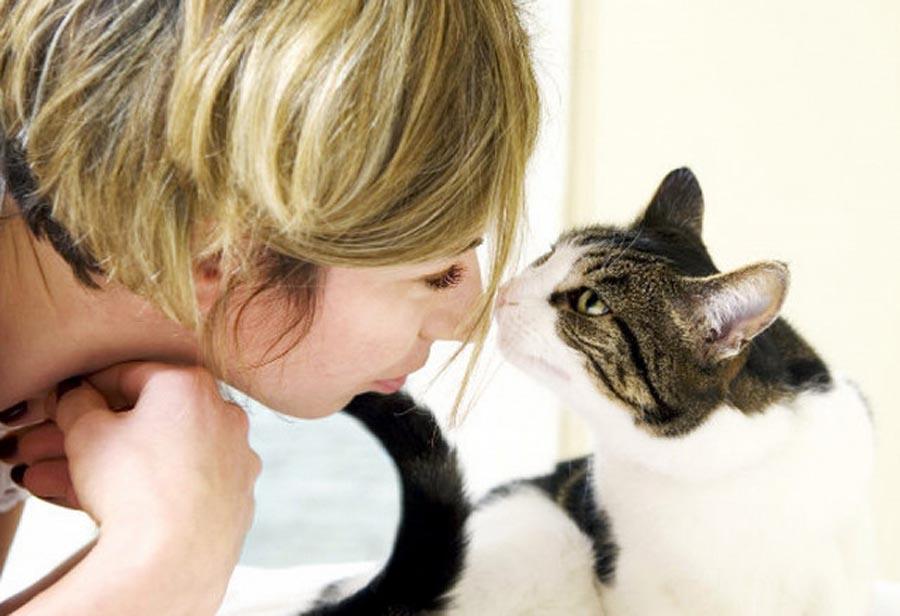 5 способов наказать кошку, не испортив с ней отношения