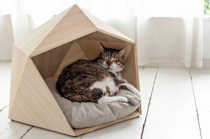 Домик для кошки: варианты как сделать своими руками