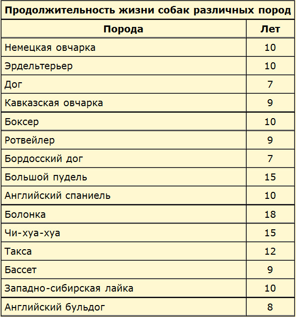 Сколько живут лайки в домашних условиях
