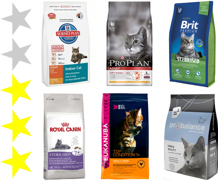 Как правильно выбрать корм для котёнка