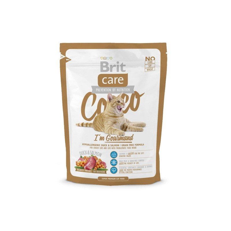 Брит: корм для кошек и котят, сухой и влажный