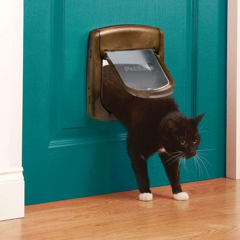 Дверца для кошек в дверь в туалет: как выбрать лаз