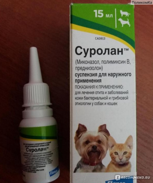 Суролан — ушные капли для кошек