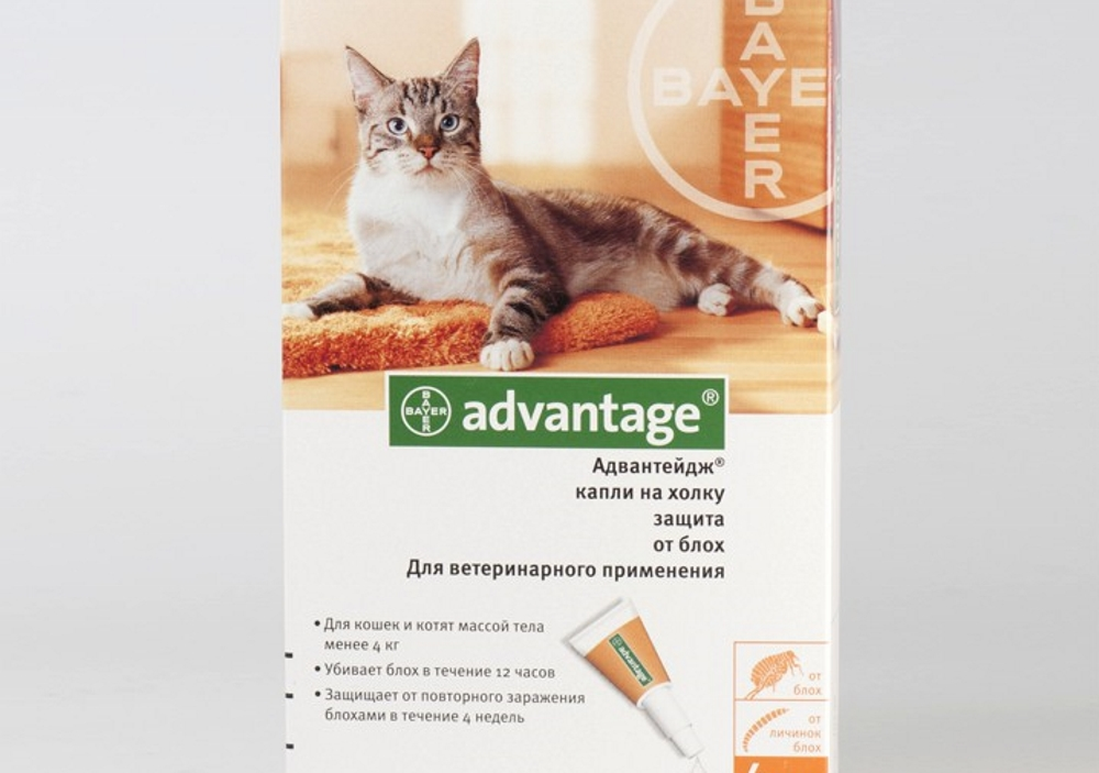 Адвантейдж для кошек: инструкция по применению