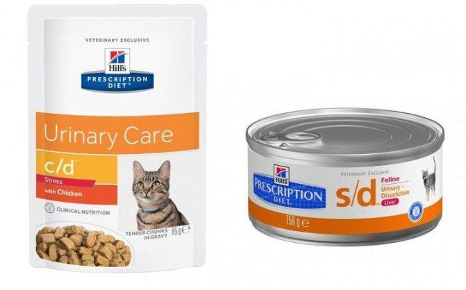 Кормление кошек с заболеваниями печени: особенности и полезные рекомендации