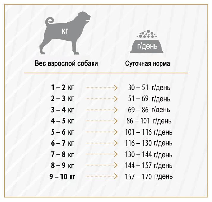 Сколько раз в день кормить собаку взрослую и щенка