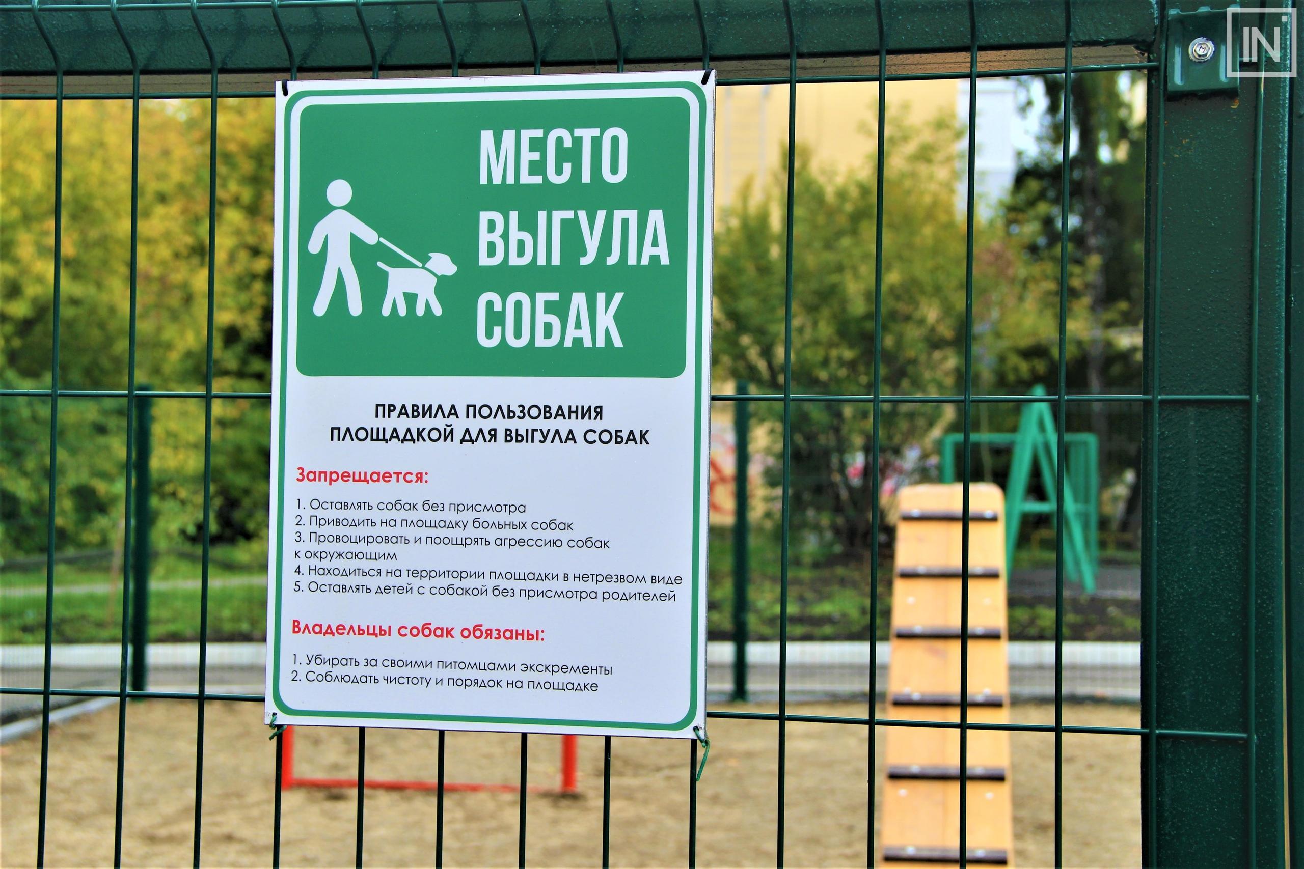 Площадка для выгула для собак: нормы и правила