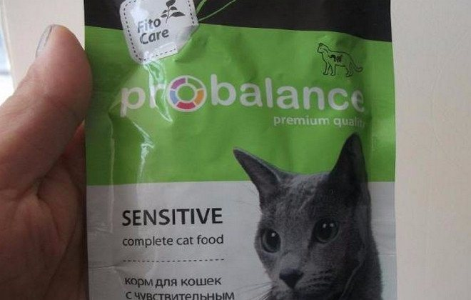 Обзор корма для кошек «Трейнер»
