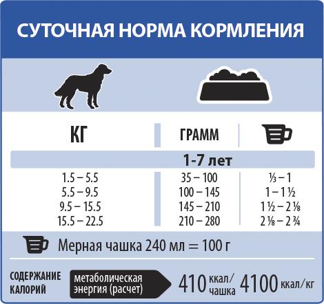 Всё о кормление щенков: нормы, рацион, правила