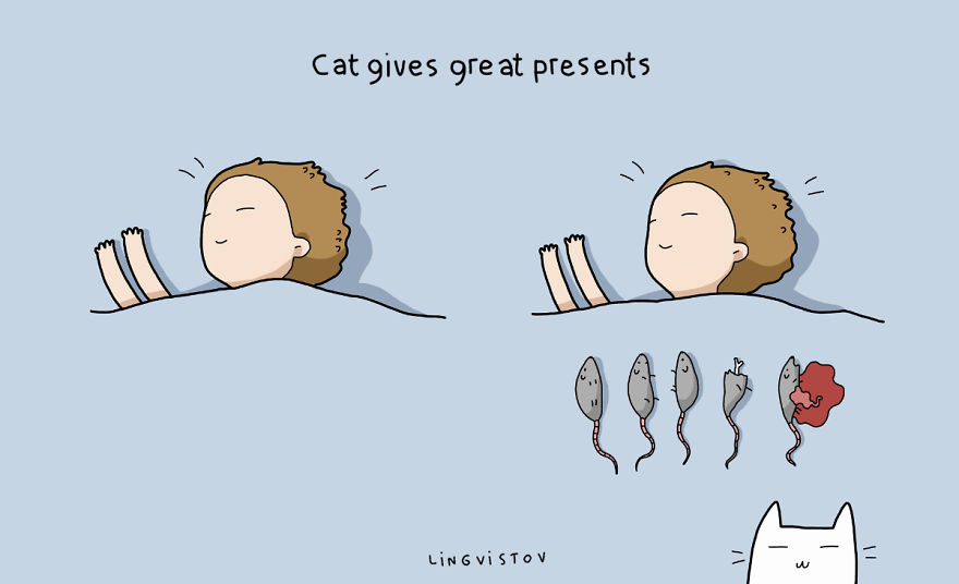 10 научно обоснованных причин завести кота