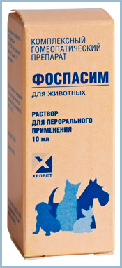 Препарат Фоспасим для кошек: залог спокойствия питомца
