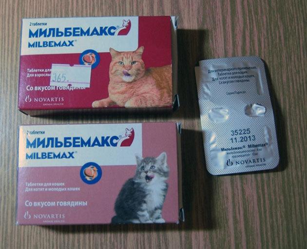 Обзор ветеринарного препарата Мильбемакс