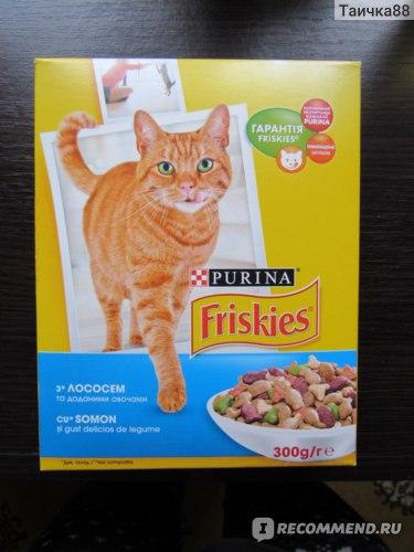 Корм «Фрискис» для кошек: обзор продукта