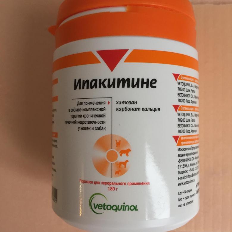 Ипакитине: лекарство для лечения почечной недостаточности у кошек