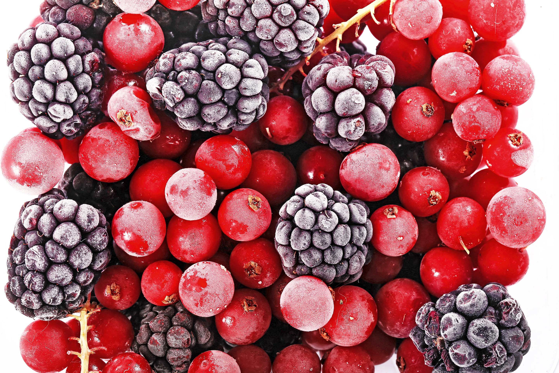 Можно ли собакам черешню, малину, абрикосы и другие ягоды