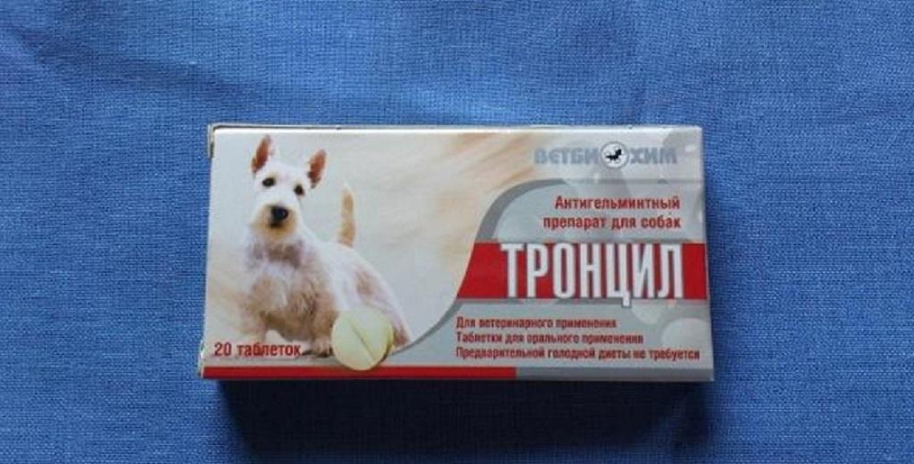 Тронцил-К: эффективное средство от гельминтозов у кошек