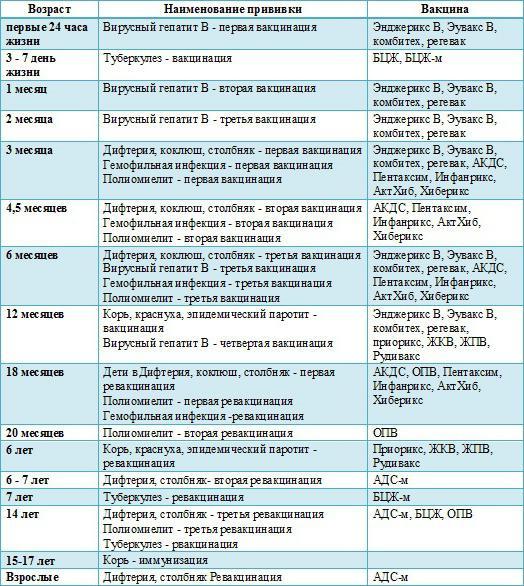 Прививки для собак по возрасту: таблица вакцинации