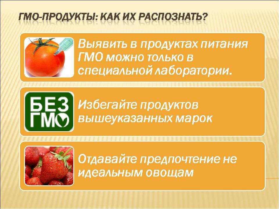ГМО и органические продукты в питании домашних животных