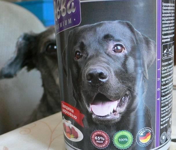 Авва: корм для собак мелких пород, холистик, премиум