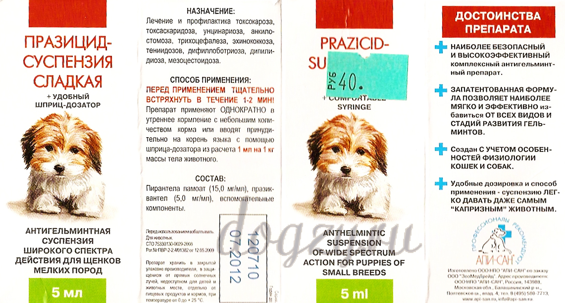 За сколько дней до прививки давать глистогонное кошке
