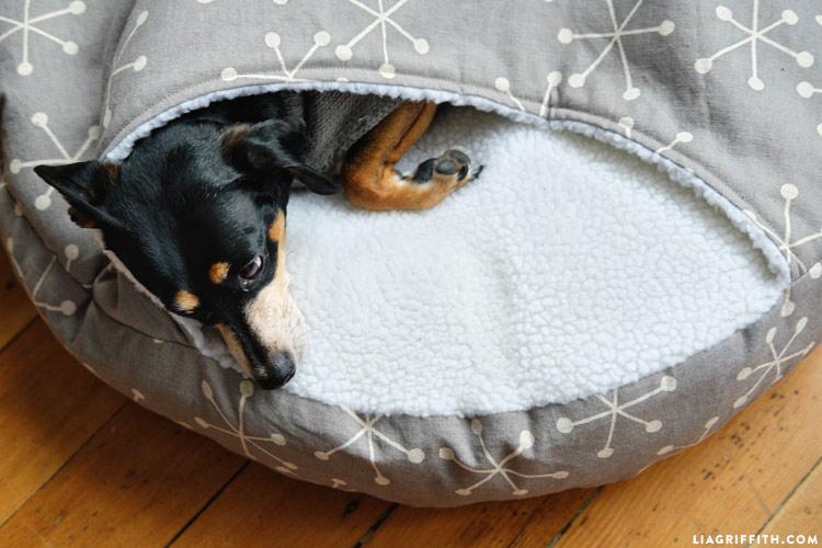 Лежанка для собаки своими руками: как сделать