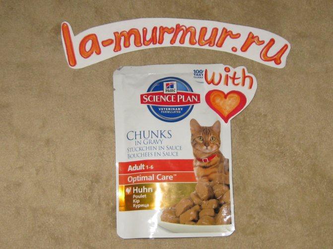 Ассортимент и особенности корма для кошек «Хиллс»