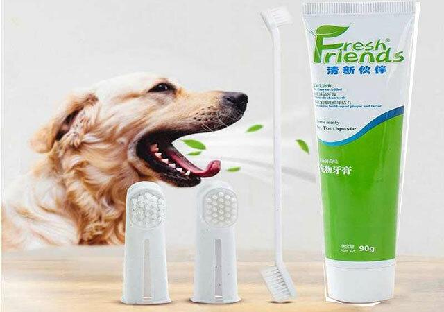 Зубная паста для собак от камня, а также гель и спрей