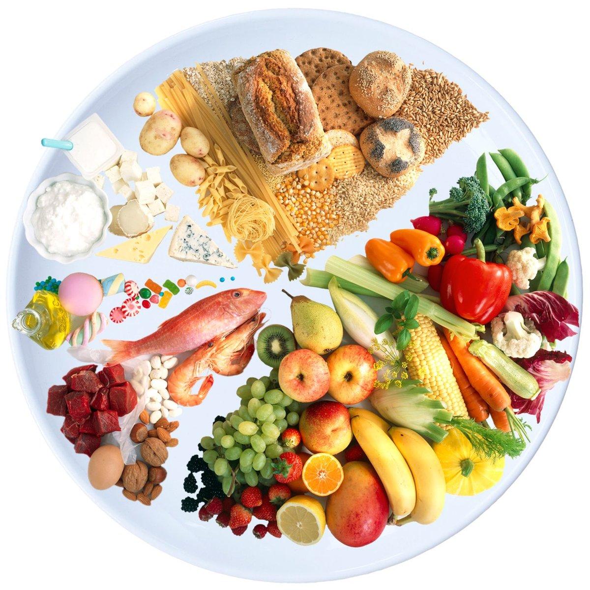 Чем кормить кошку в домашних условиях натуральной едой: особенности питания