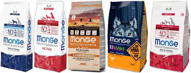 Monge: корм для собак для мелких и крупных пород