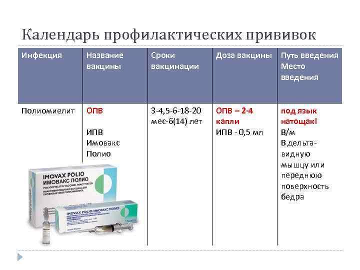 Вакцинация кошек: какие и когда делать прививки