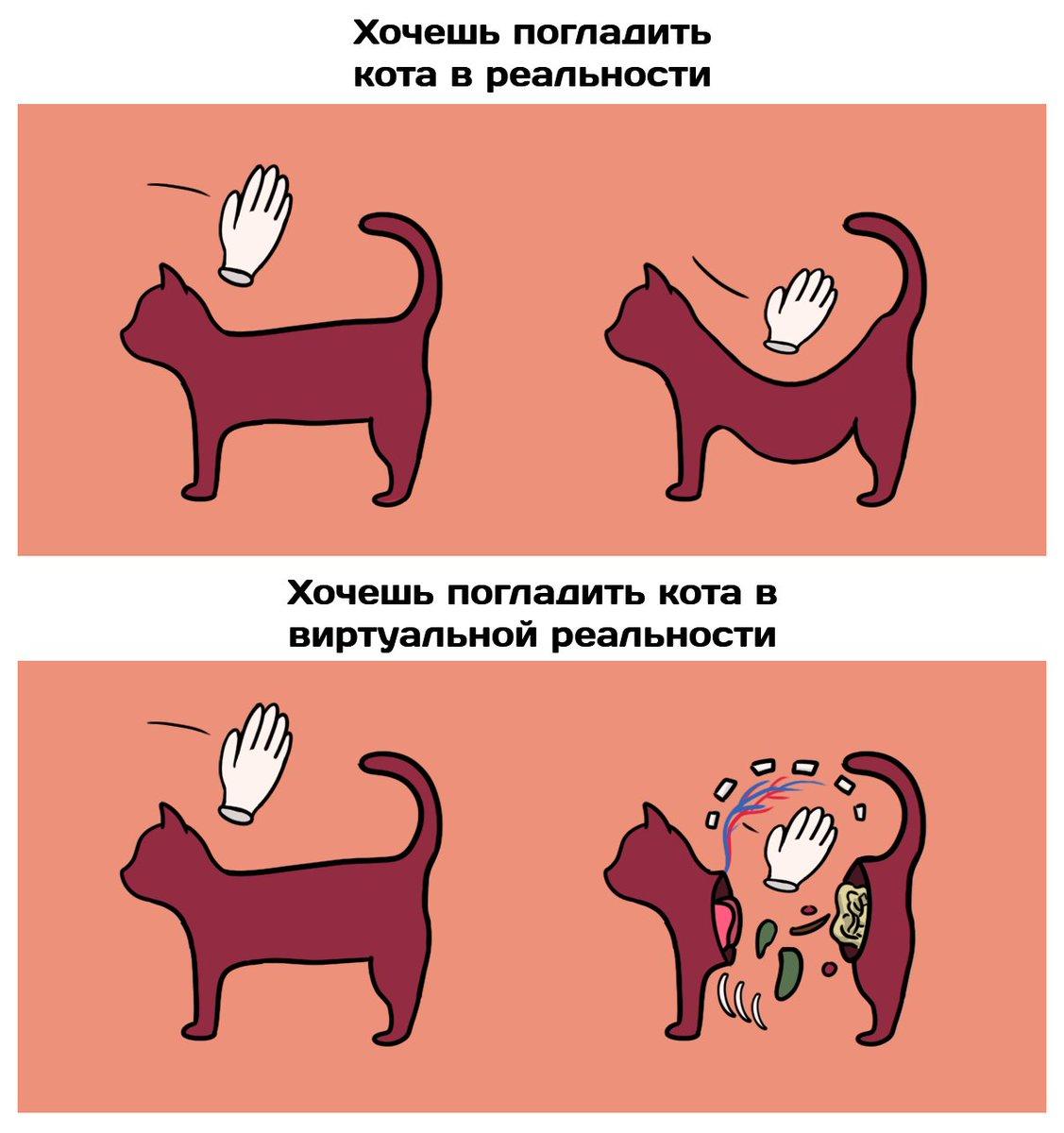 Сколько нужно гладить кота, чтобы избавиться от стресса