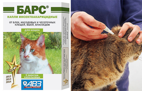 Капли Барс для кошек от блох и клещей: инструкция