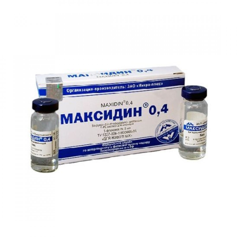Максидин: особенности препарата для лечения кошек