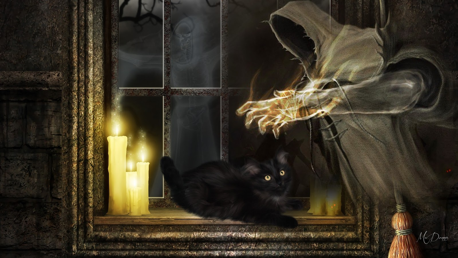 Кошки и колдовство