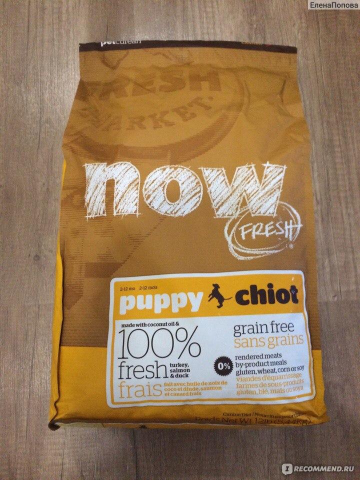 Корм Now для собак: Fresh, Natural Holistic
