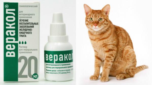 Веракол для кошек и котов