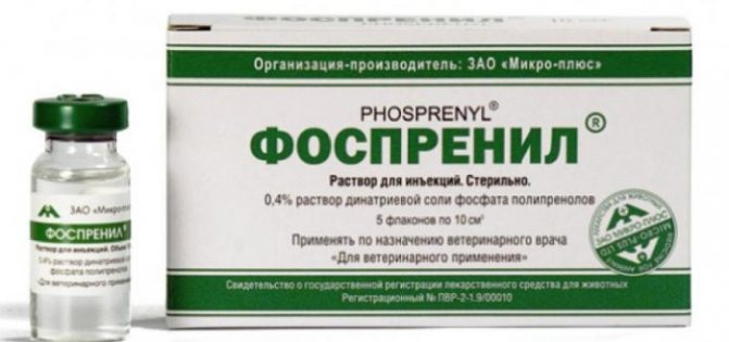 Обзор препарата для иммуностимуляции кошек Фоспренил