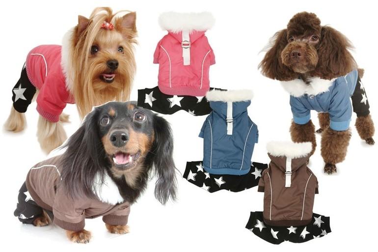 Одежда для больших собак крупных пород