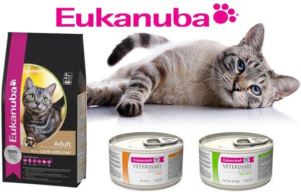 Корма «Эукануба» для кошек: супер-премиум или грамотная реклама?