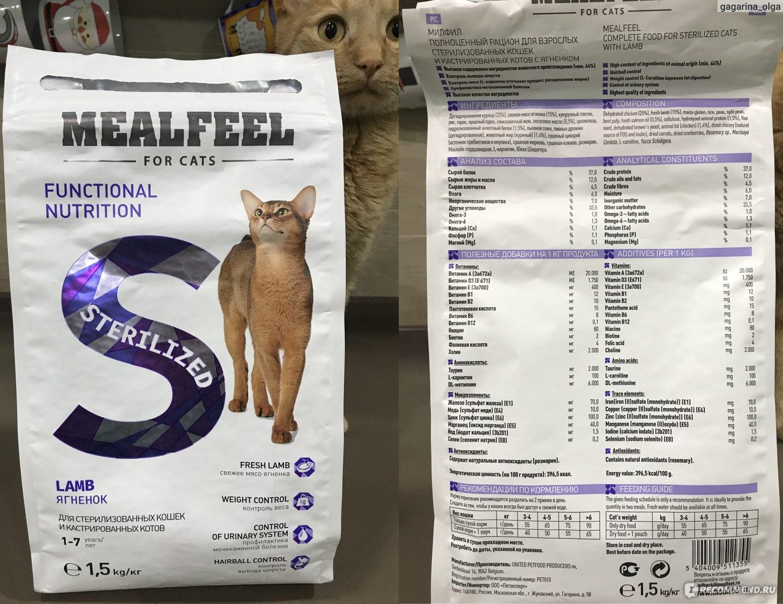 Обзор корма для кошек «Феликс»