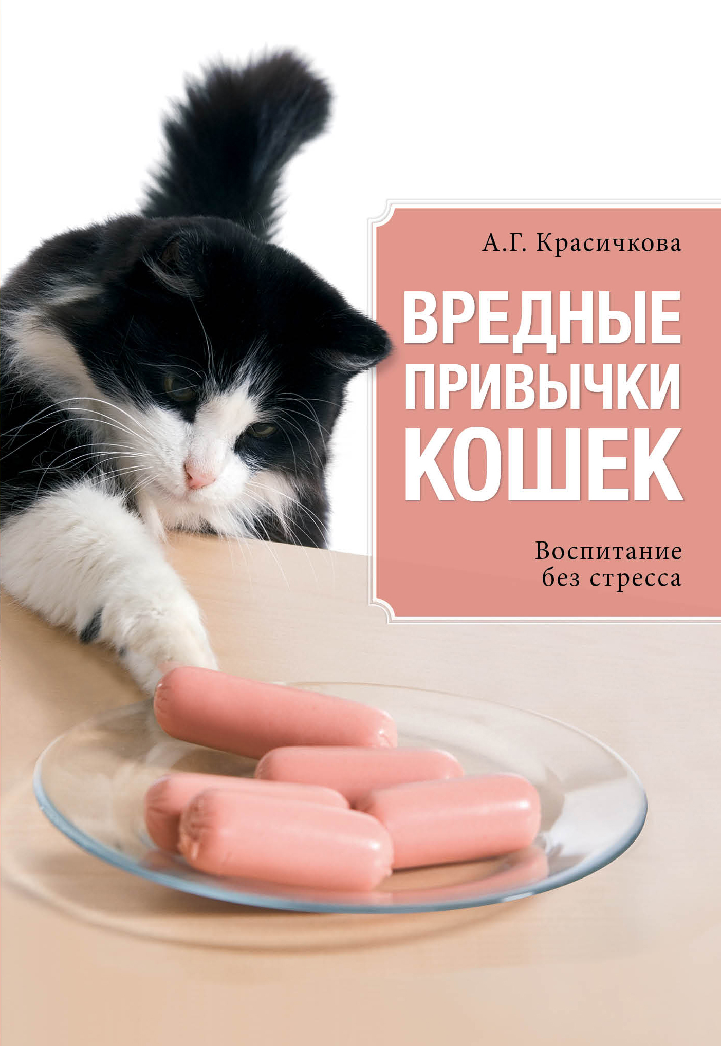 Вредные привычки, опасные для кота
