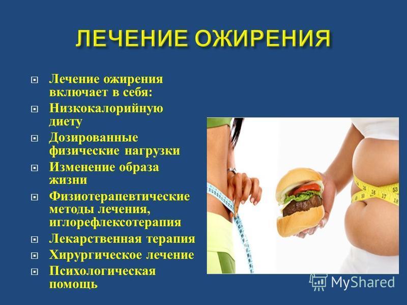 Ожирение у собак