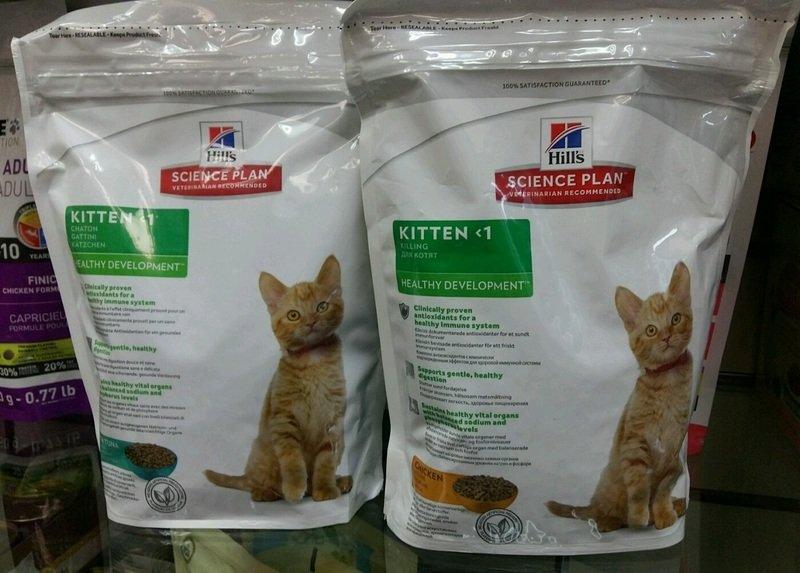 Какой класс корма выбрать для кошки