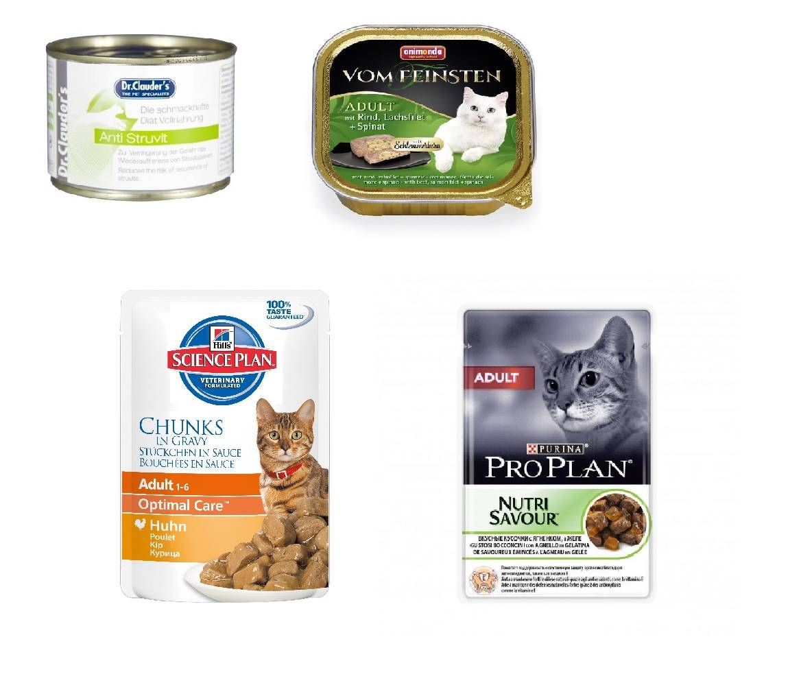 Бюджетные корма для кошек хорошего качества