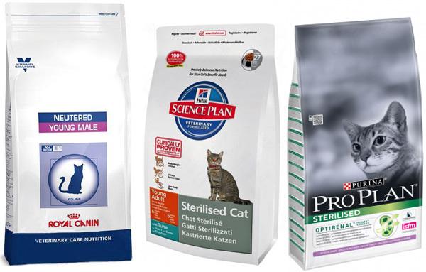Корма для стерилизованных кошек и кастрированных котов: характеристики и правила выбора