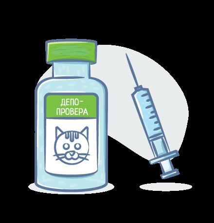 Депо-Провера для кошек: дозировка, укол от гуляния