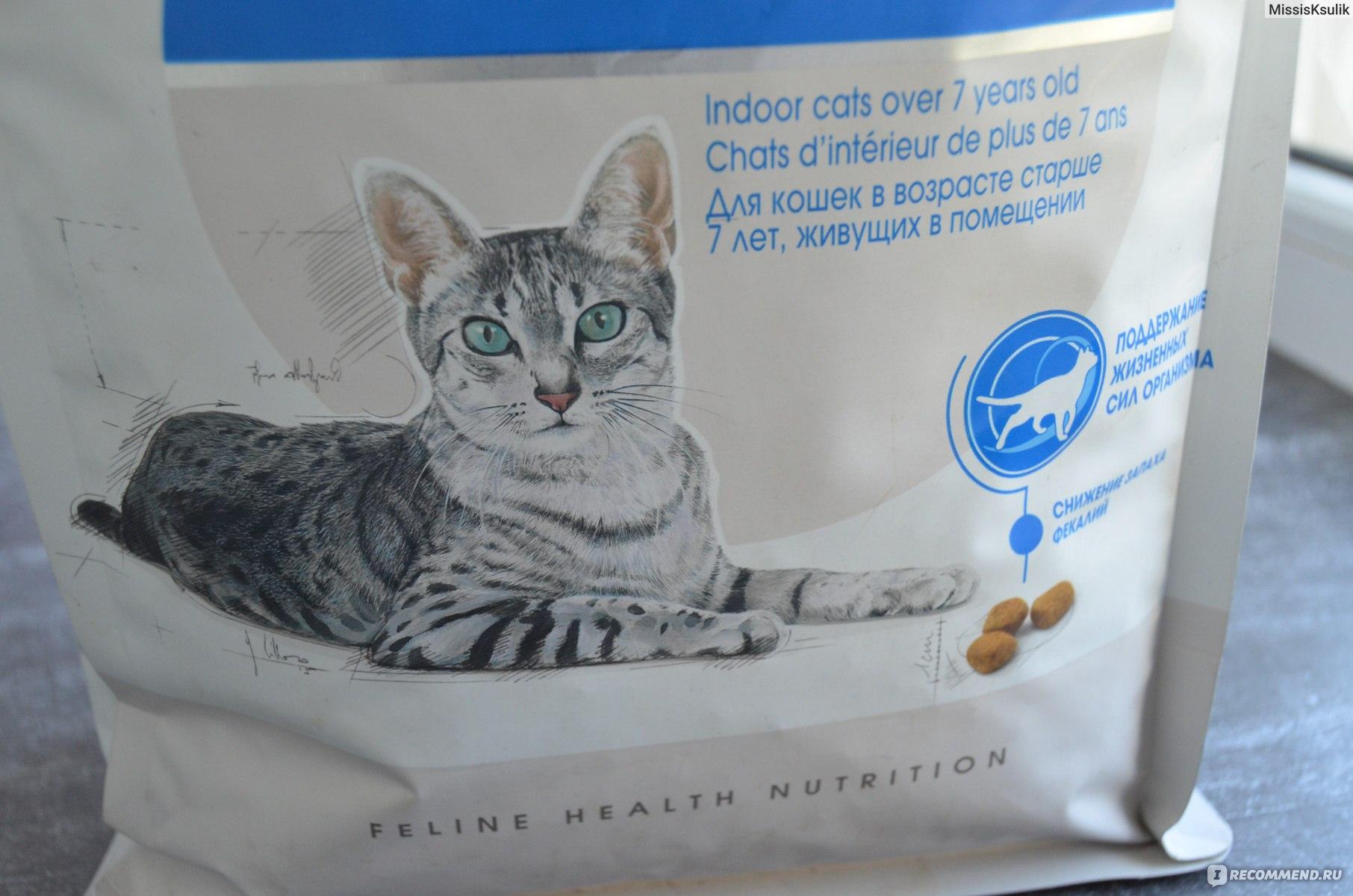 Наша марка: корм для кошек и котят, состав