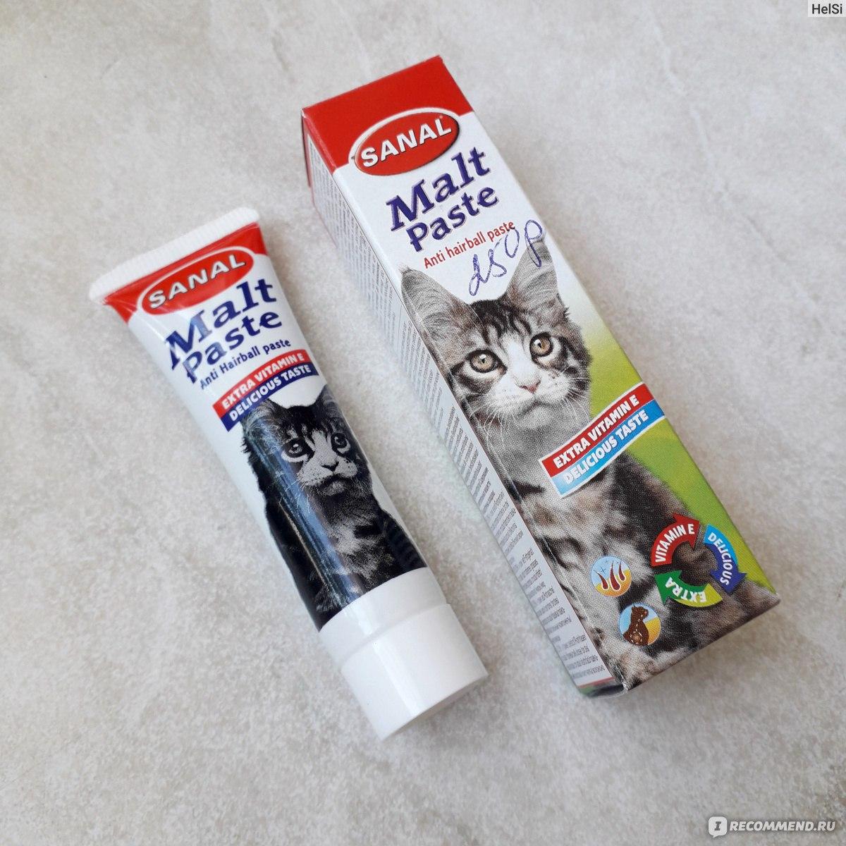 Мальт-паста: эффективное средство для выведения шерсти из желудка кошек